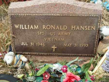 HANSEN, WILLIAM RONALD - Park County, Colorado | WILLIAM RONALD HANSEN - Colorado Gravestone Photos