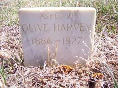 HARVEY, OLIVE - Park County, Colorado | OLIVE HARVEY - Colorado Gravestone Photos