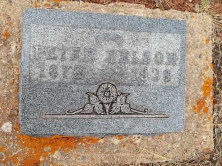 NELSON, PETER - Park County, Colorado   PETER NELSON - Colorado Gravestone Photos