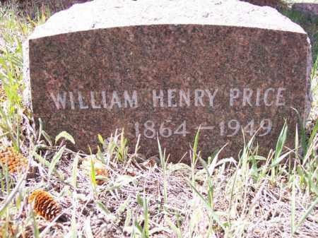 PRICE, WILLIAM HENRY - Park County, Colorado | WILLIAM HENRY PRICE - Colorado Gravestone Photos