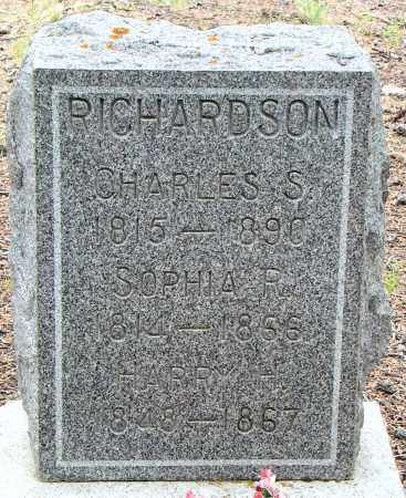 RICHARDSON, CHARLES S. - Park County, Colorado | CHARLES S. RICHARDSON - Colorado Gravestone Photos