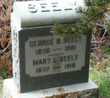 SEELY, MARY L. - Park County, Colorado | MARY L. SEELY - Colorado Gravestone Photos