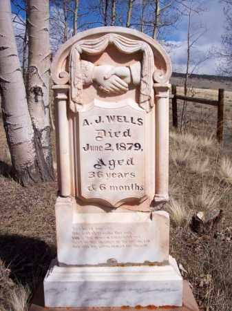 WELLS, A.J. - Park County, Colorado | A.J. WELLS - Colorado Gravestone Photos