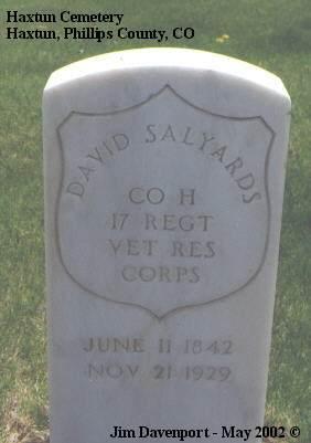 SALYARDS, DAVID - Phillips County, Colorado | DAVID SALYARDS - Colorado Gravestone Photos