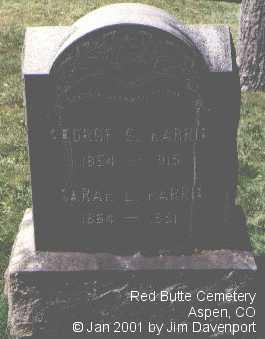 HARRIS, GEORGE G. - Pitkin County, Colorado | GEORGE G. HARRIS - Colorado Gravestone Photos