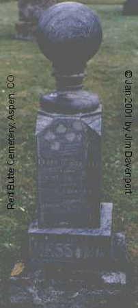 HESSONG, DODGE K. - Pitkin County, Colorado | DODGE K. HESSONG - Colorado Gravestone Photos