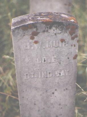 MUIR, J. W. - Pitkin County, Colorado | J. W. MUIR - Colorado Gravestone Photos
