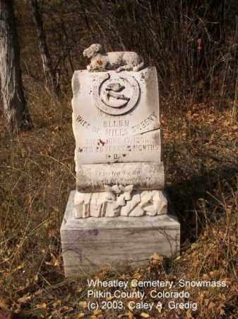 SWEENEY, ELLEN - Pitkin County, Colorado | ELLEN SWEENEY - Colorado Gravestone Photos