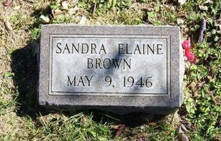 BROWN, SANDRA ELAINE - Prowers County, Colorado | SANDRA ELAINE BROWN - Colorado Gravestone Photos