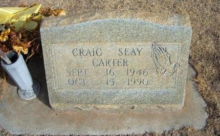 CARTER, CRAIG SEAY - Prowers County, Colorado | CRAIG SEAY CARTER - Colorado Gravestone Photos