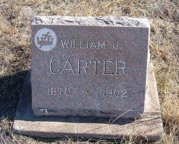 CARTER, WILLIAM J - Prowers County, Colorado | WILLIAM J CARTER - Colorado Gravestone Photos