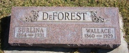 DEFOREST, SURLINA - Prowers County, Colorado | SURLINA DEFOREST - Colorado Gravestone Photos