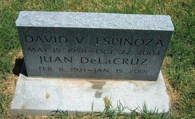 ESPINOZA, DAVID V - Prowers County, Colorado | DAVID V ESPINOZA - Colorado Gravestone Photos