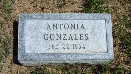 GONZALES, ANTONIA - Prowers County, Colorado | ANTONIA GONZALES - Colorado Gravestone Photos