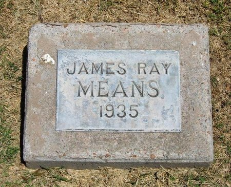 MEANS, JAMES RAY - Prowers County, Colorado | JAMES RAY MEANS - Colorado Gravestone Photos