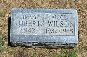WILSON, ALICE - Prowers County, Colorado | ALICE WILSON - Colorado Gravestone Photos