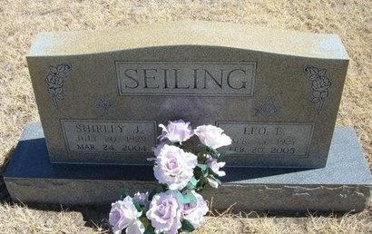 SEILING, LEO E - Prowers County, Colorado | LEO E SEILING - Colorado Gravestone Photos