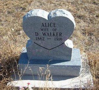 WALKER, ALICE - Prowers County, Colorado | ALICE WALKER - Colorado Gravestone Photos