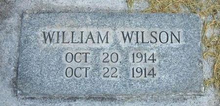 WILSON, WILLIAM - Prowers County, Colorado | WILLIAM WILSON - Colorado Gravestone Photos