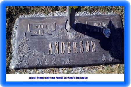 ANDERSON, DAVID L - Pueblo County, Colorado | DAVID L ANDERSON - Colorado Gravestone Photos