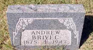 BRIVEC, ANDREW - Pueblo County, Colorado   ANDREW BRIVEC - Colorado Gravestone Photos