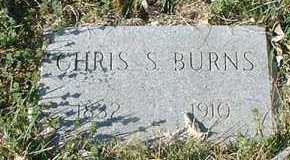 BURNS, CHRIS S. - Pueblo County, Colorado | CHRIS S. BURNS - Colorado Gravestone Photos