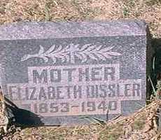 DISSLER, ELIZABETH - Pueblo County, Colorado   ELIZABETH DISSLER - Colorado Gravestone Photos