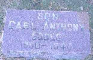 GODEC, CARL ANTHONY - Pueblo County, Colorado | CARL ANTHONY GODEC - Colorado Gravestone Photos