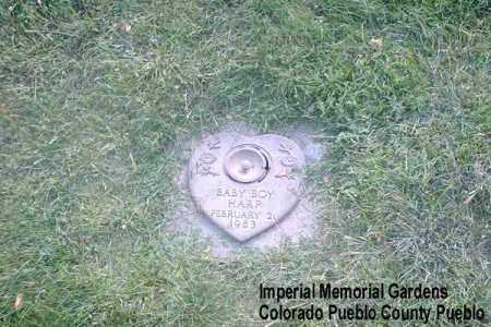 HARP, BABY BOY - Pueblo County, Colorado   BABY BOY HARP - Colorado Gravestone Photos