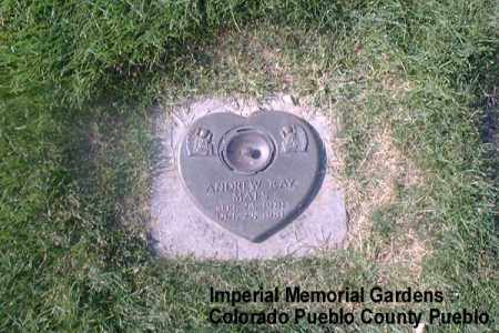 MAES, ANDREW RAY - Pueblo County, Colorado | ANDREW RAY MAES - Colorado Gravestone Photos