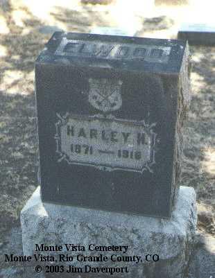ELWOOD, HARLEY H. - Rio Grande County, Colorado | HARLEY H. ELWOOD - Colorado Gravestone Photos