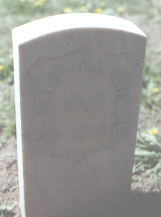 LEWIS, DAVID D. - Rio Grande County, Colorado | DAVID D. LEWIS - Colorado Gravestone Photos
