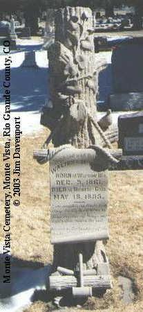 MCNUTT, WALTER L. - Rio Grande County, Colorado   WALTER L. MCNUTT - Colorado Gravestone Photos
