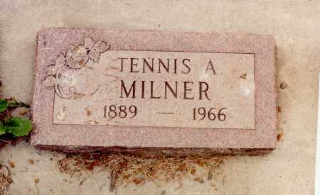 MILNER, TENNIS ALBERT - Rio Grande County, Colorado | TENNIS ALBERT MILNER - Colorado Gravestone Photos