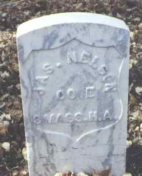 NELSON, JAS. - Rio Grande County, Colorado | JAS. NELSON - Colorado Gravestone Photos