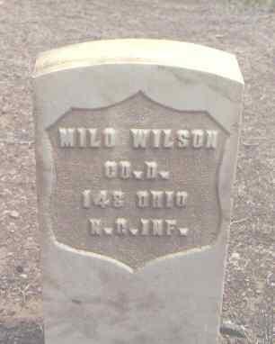 WILSON, MILO - Rio Grande County, Colorado   MILO WILSON - Colorado Gravestone Photos