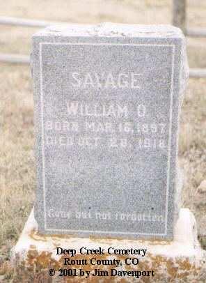 SAVAGE, WILLIAM O. - Routt County, Colorado   WILLIAM O. SAVAGE - Colorado Gravestone Photos
