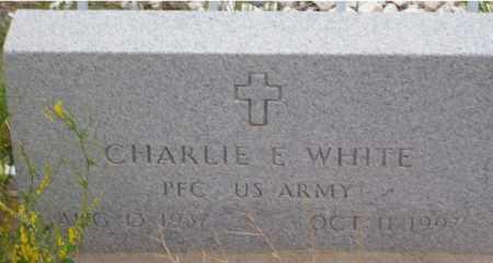 WHITE, CHARLIE E. - Saguache County, Colorado | CHARLIE E. WHITE - Colorado Gravestone Photos
