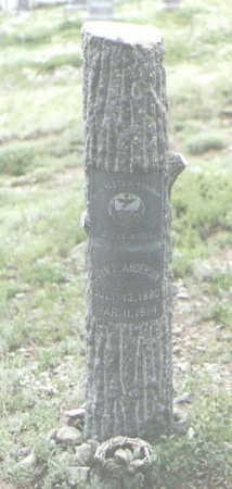ANDERSON, JOHN L. - San Juan County, Colorado   JOHN L. ANDERSON - Colorado Gravestone Photos