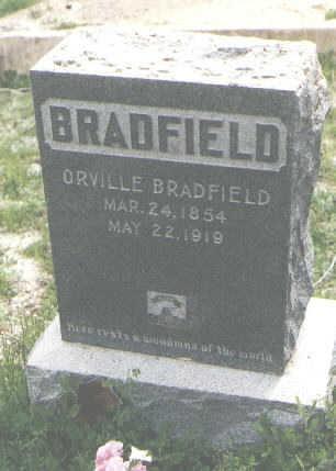 BRADFIELD, ORVILLE - San Juan County, Colorado | ORVILLE BRADFIELD - Colorado Gravestone Photos