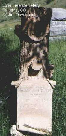 CARROLL, JOHN T. - San Miguel County, Colorado | JOHN T. CARROLL - Colorado Gravestone Photos