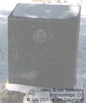 DETWILER, H. G. - Summit County, Colorado | H. G. DETWILER - Colorado Gravestone Photos