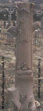 BOULWARE, THOMAS G. - Teller County, Colorado | THOMAS G. BOULWARE - Colorado Gravestone Photos
