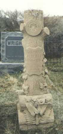 CHAPMAN, ALBERT D. - Teller County, Colorado   ALBERT D. CHAPMAN - Colorado Gravestone Photos
