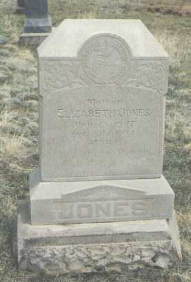 JONES, ELIZABETH - Teller County, Colorado | ELIZABETH JONES - Colorado Gravestone Photos