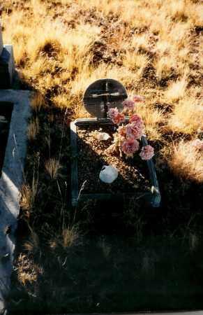 MCLAUGHLIN, DOG - Teller County, Colorado | DOG MCLAUGHLIN - Colorado Gravestone Photos