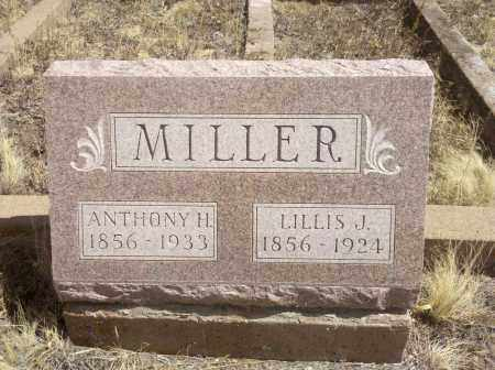 MILLER, ANTHONY H - Teller County, Colorado | ANTHONY H MILLER - Colorado Gravestone Photos