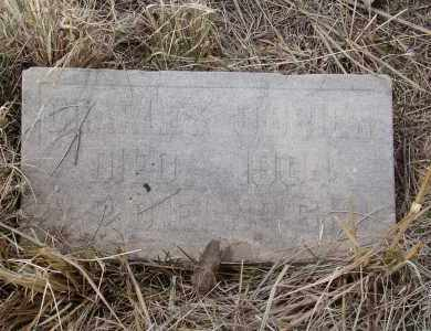 O'BRIEN, CHARLES - Teller County, Colorado | CHARLES O'BRIEN - Colorado Gravestone Photos