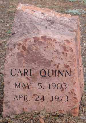 QUINN, CARL - Teller County, Colorado | CARL QUINN - Colorado Gravestone Photos