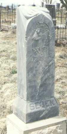 SEBEK, JOHN A. - Teller County, Colorado   JOHN A. SEBEK - Colorado Gravestone Photos